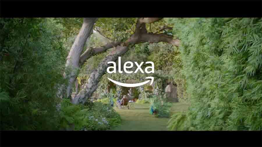 Alexa Loses Her Voice